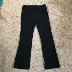 Black express columnist dress pants
